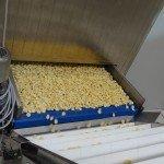 Macchine linee e impianti per pasta secca