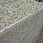Carrello paccheri pasta secca