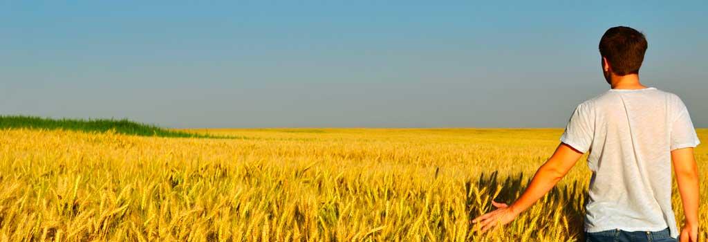 giovani che vogliono aggiornare la propria azienda agricola